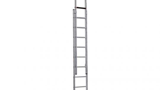 Professionele ladder